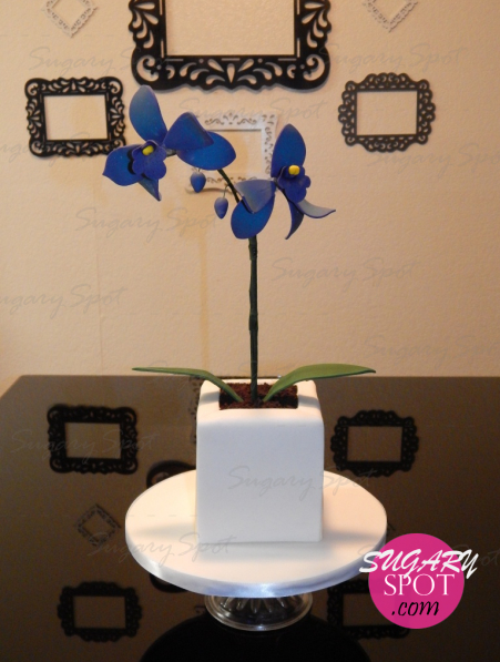 Pastel - Maceta de Orquídeas. Flores de pasta de azúcar hechas a mano. Tierra hecha de galletas Oreo.