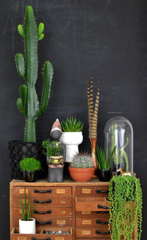 Näyttäviä asetelmia erilaisista viherkasveista voi luoda persoonallisesti. Kuva: Pinterest