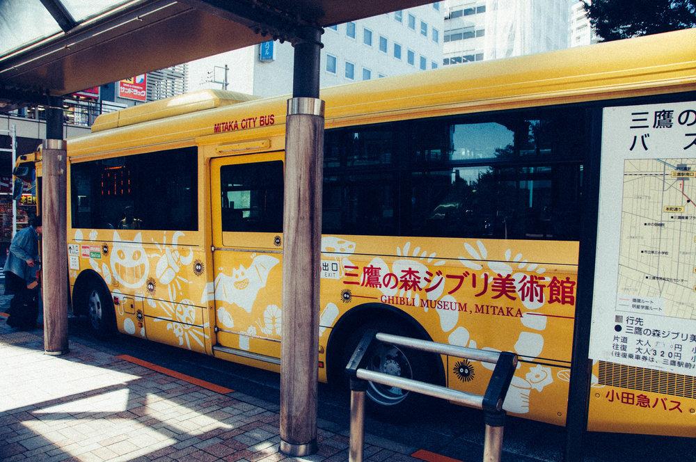 DSC_3304-19.jpg