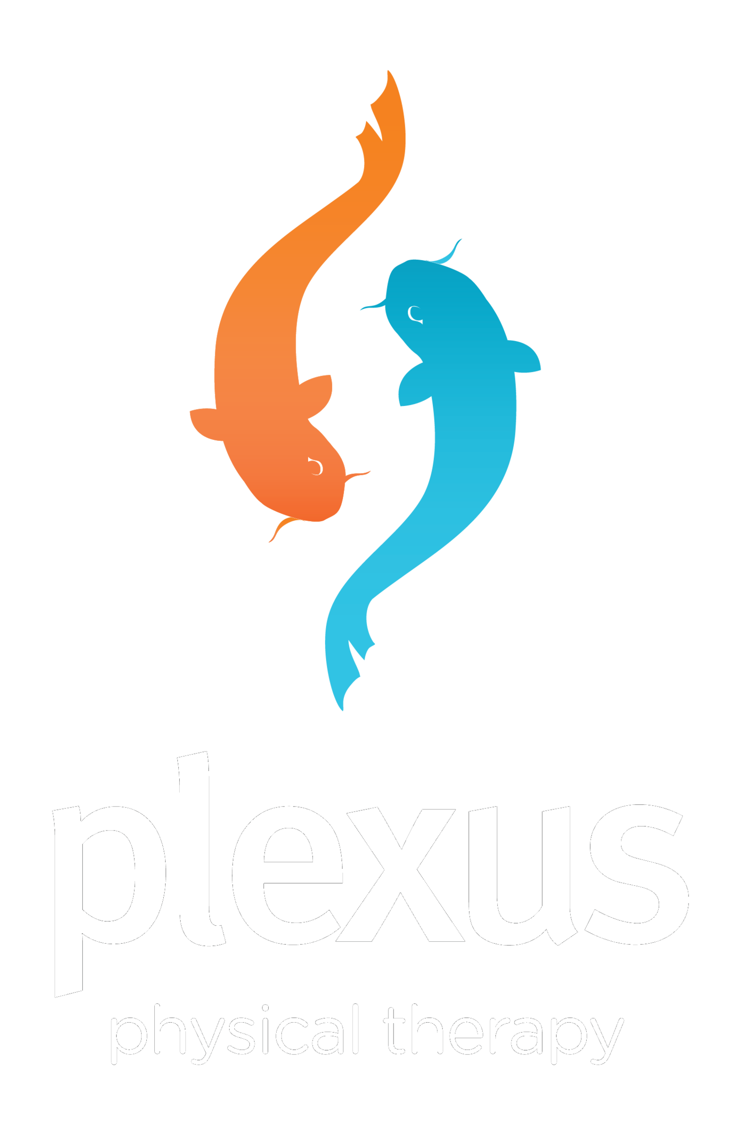 Plexus Physical Therapy