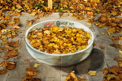 kelloggs otoño.jpg