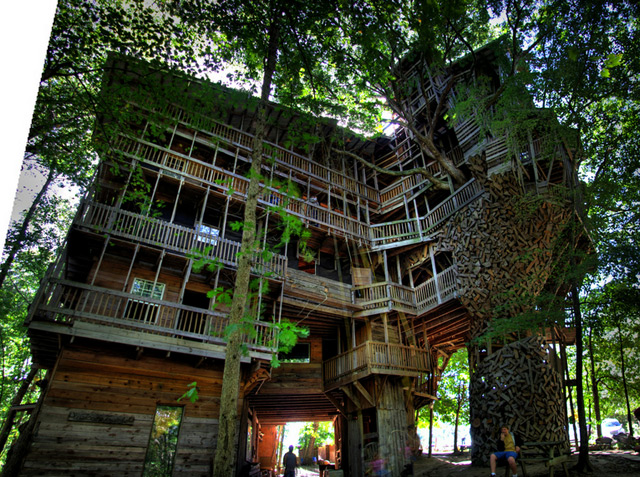 Treehouse 1