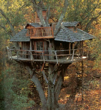 Treehouse 3