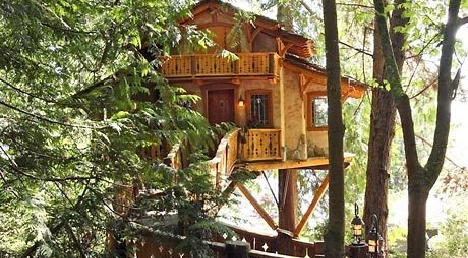 Treehouse 5
