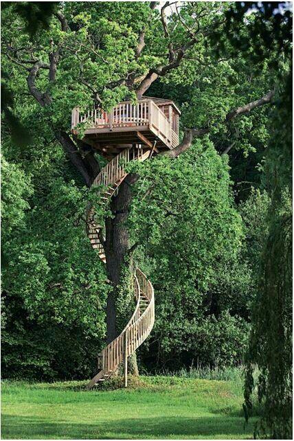 Tree Houses 14