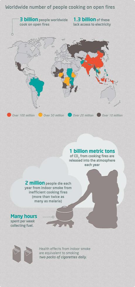 BIO-HomeStove-Need-Infographic-461x980.jpg