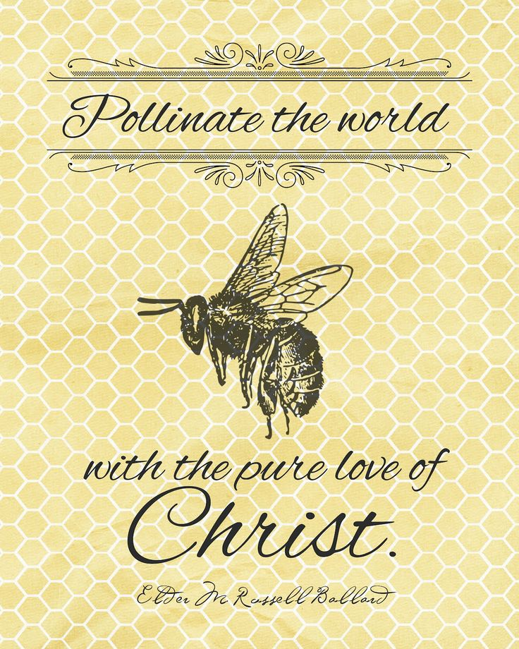 pOLLINATE The World w Charity.jpg