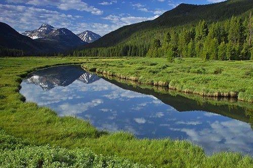 Bear River Christmas Meadow.jpg
