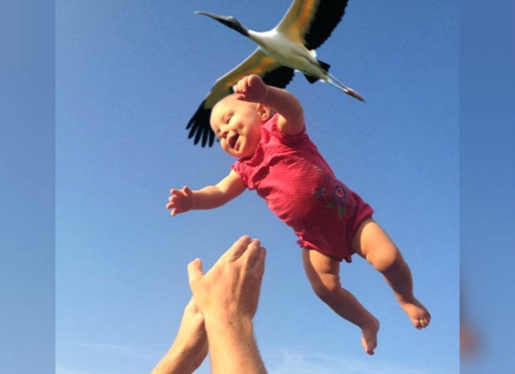 Stork and Baby.jpeg