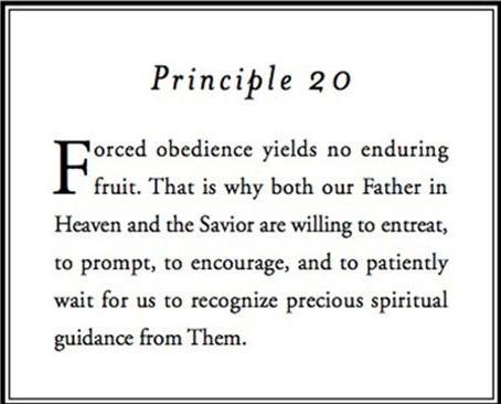 Principle 20.png