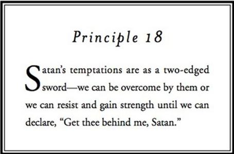 Principle 18.png