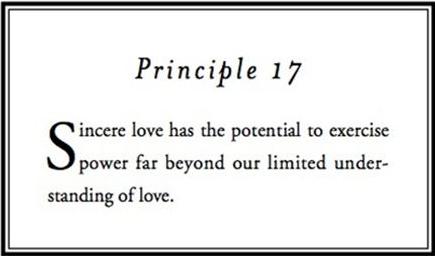 Principle 17.png