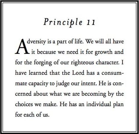 Principle 11.png