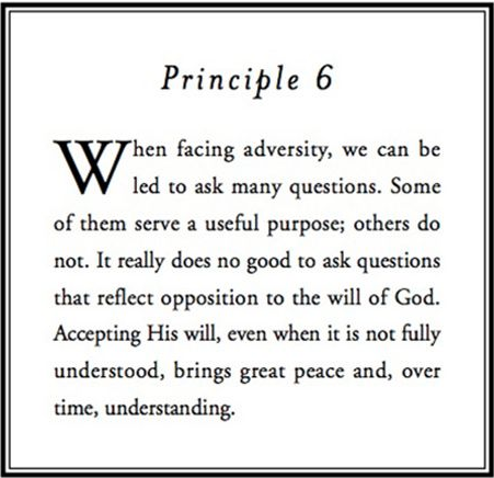 Principle 6.png