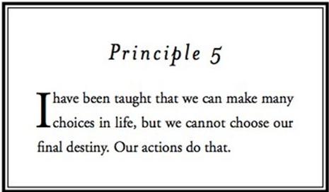 Principle 5.png