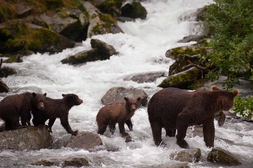 Alaska-22.jpg