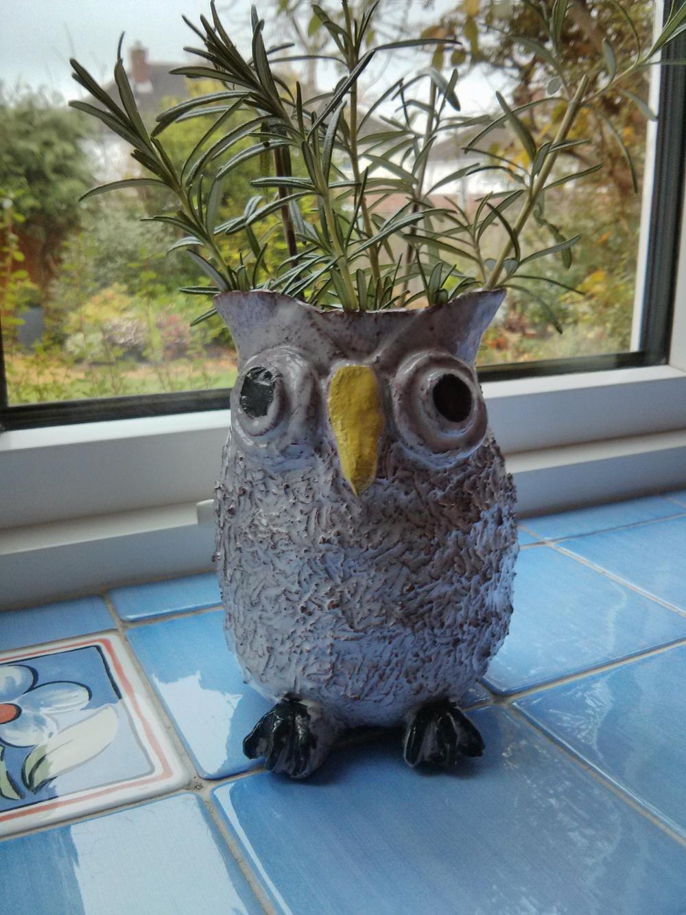 owl pot.jpg