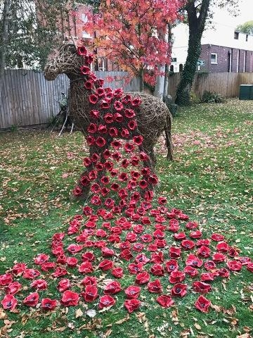 The intalled poppies are on view at the school, in Hoole, Chester untill late November. They are cascading over the school 'war horse'.