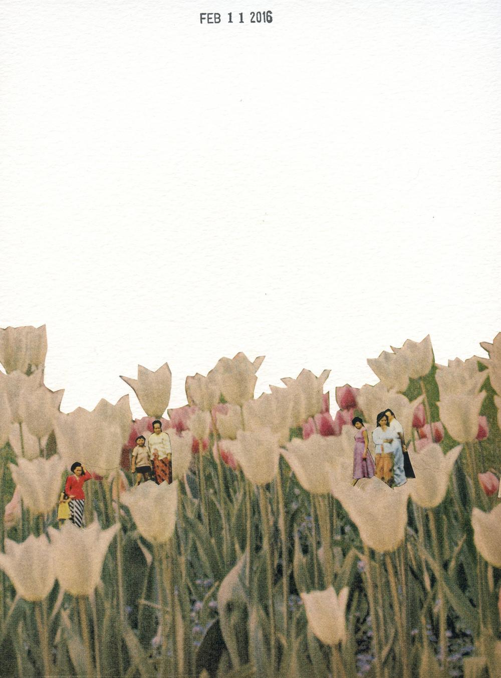 Pop Up Flowers (130)