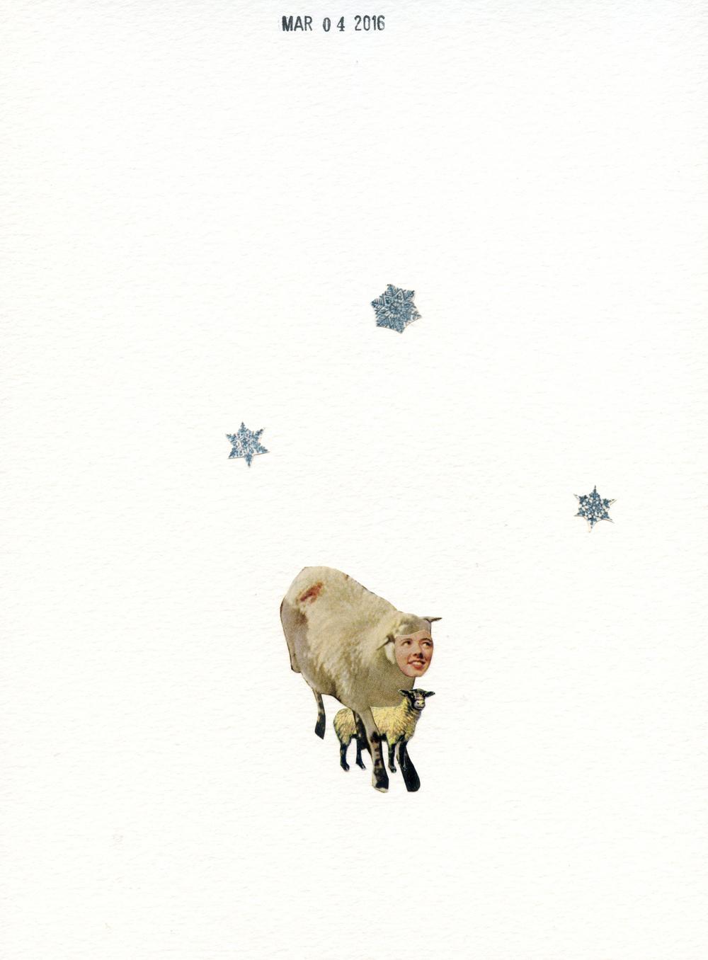 Lamb Suit (153)