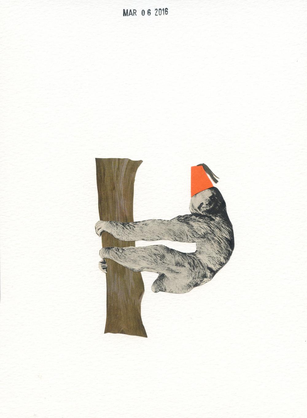 Oliver's Sloth (155)