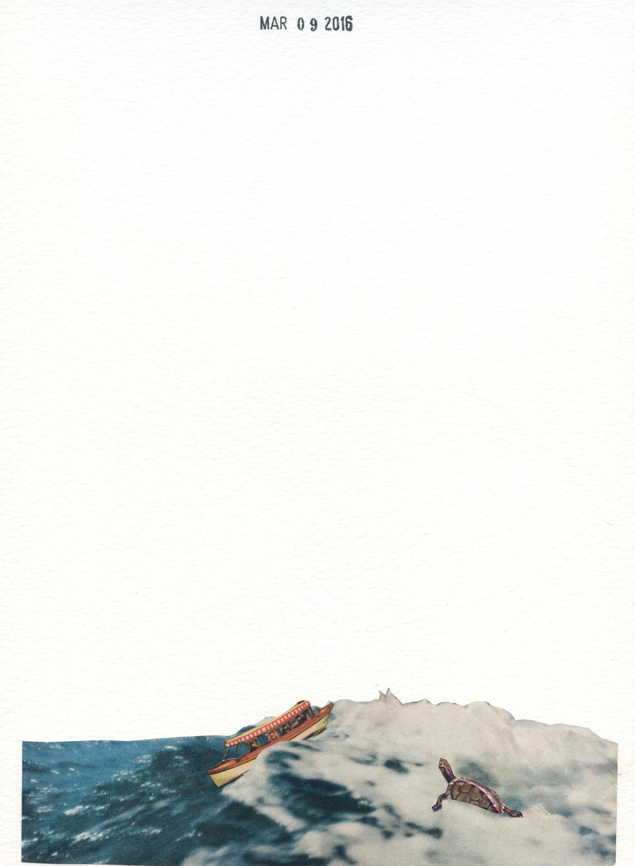 Turtle Dream (158)