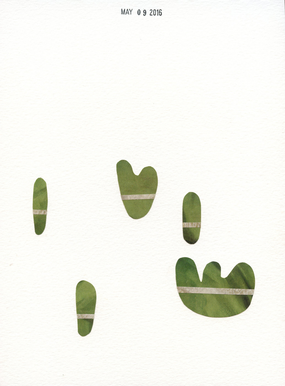 Cactus Party (219)