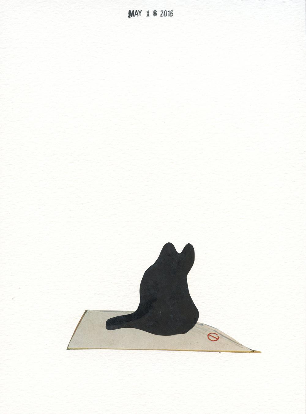 Black Cat (228)