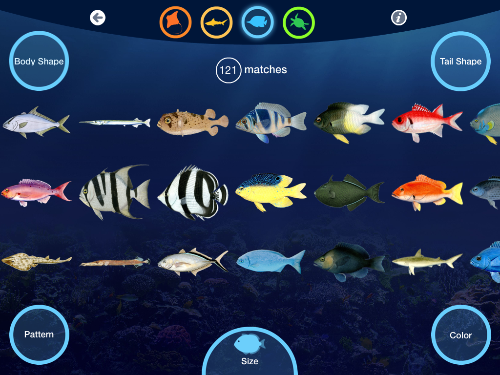 Fish aquarium identification - Neaq Had An Exclusive After Hours Open House Two Nights Ago And We Were Invited To Visit The Aquarium And See Our App In Action