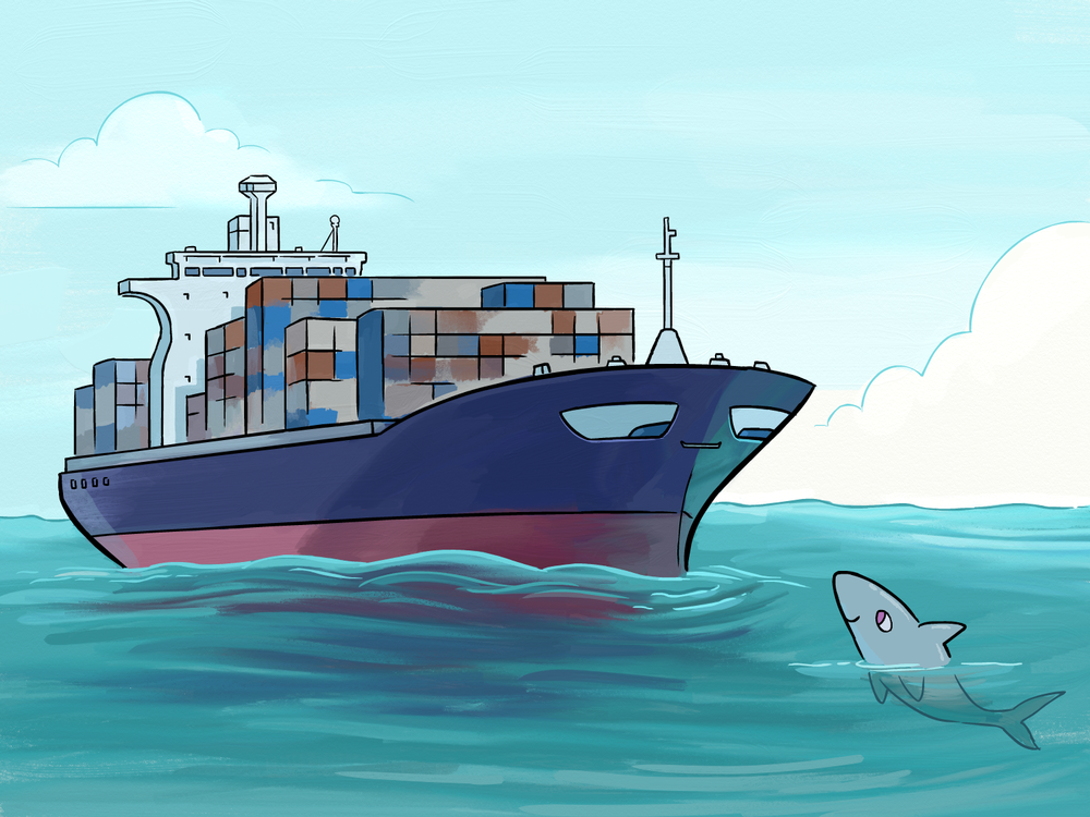 sharkboat_artwork.png