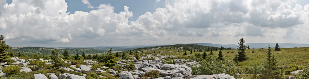 180 degree view of Dolly Sods and the Canaan Valley