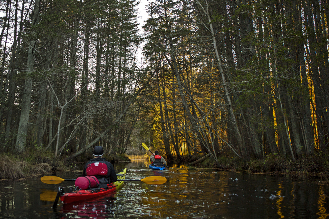 Paddling the Pine Barrens of New Jersey — Professional product and