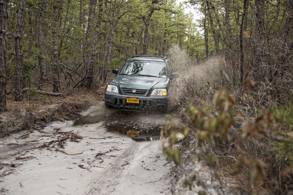 More mud puddles in the Pine Barrens.