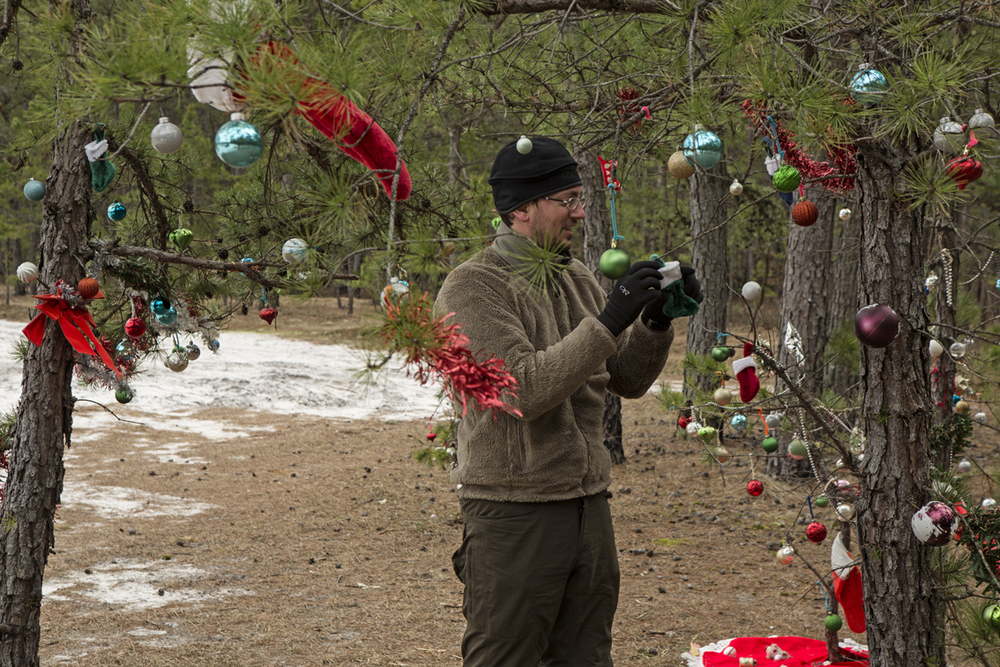 We found this section of pines that were decorated for Christmas, and Frank got to work re-decorating with ornaments that had blown off.