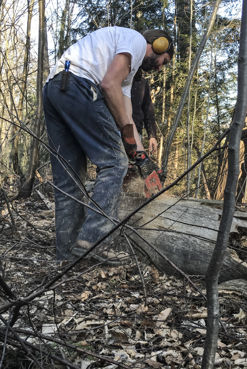 Firewood friday.  Tyler loves to use his chainsaw, and we love to burn wood.