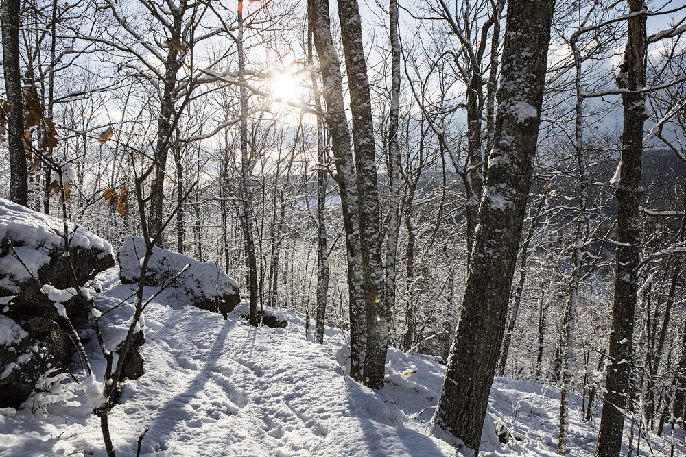 The snow covered Faulkner trail.