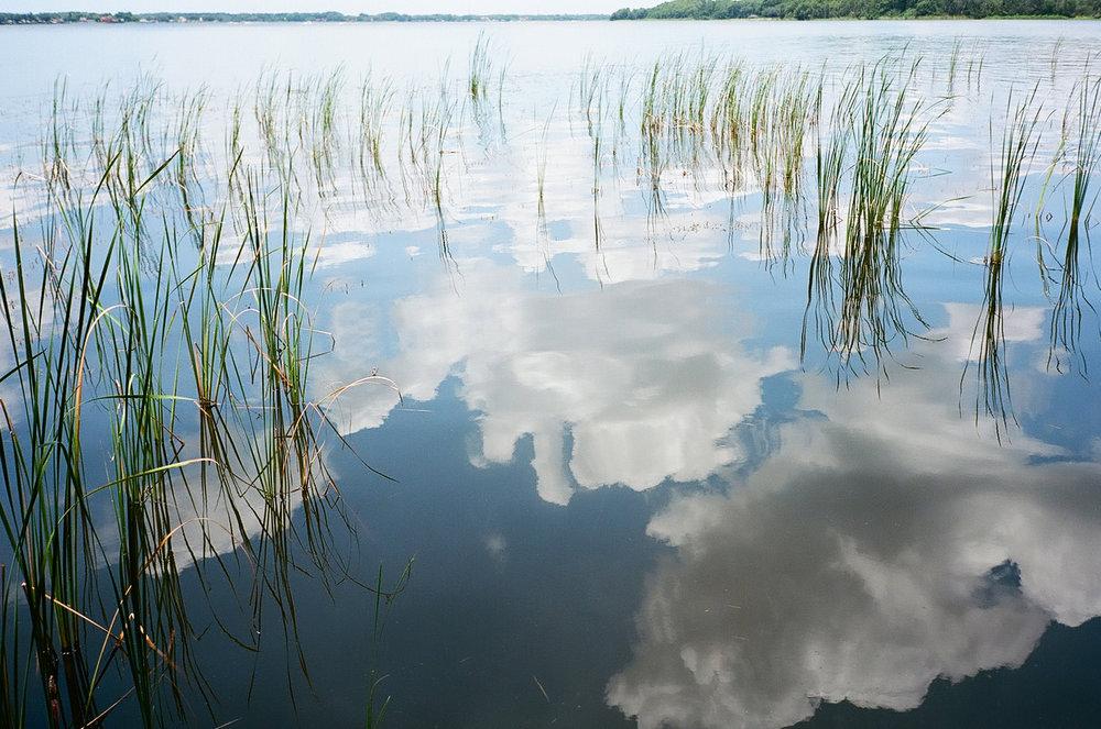 reflected.jpg
