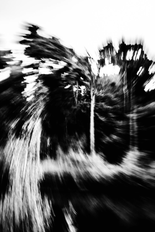 Mens-exculta-somnium-by-Cristian-Davila-Hernandez5 (1).jpg