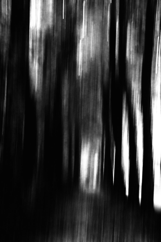 Mens-exculta-somnium-by-Cristian-Davila-Hernandez1 (1).jpg
