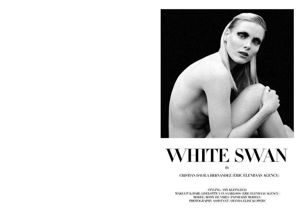 White Swan by Cristian Davila Hernandez_01.jpg