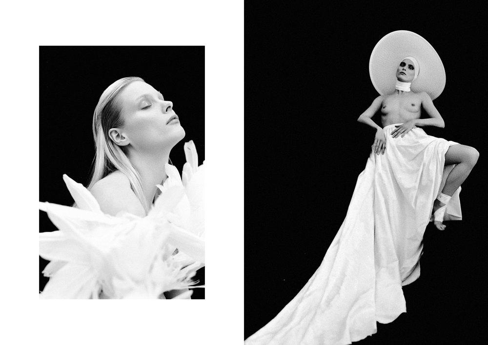 White Swan by Cristian Davila Hernandez_06.jpg