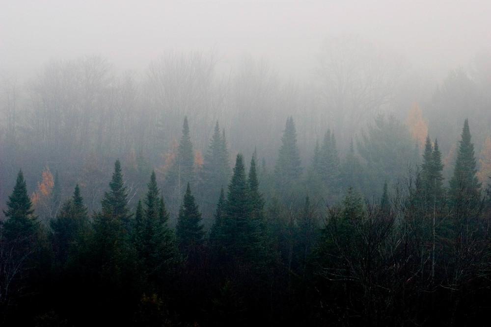 Mist Spikes