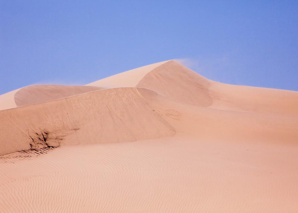 Dune Mist.jpg