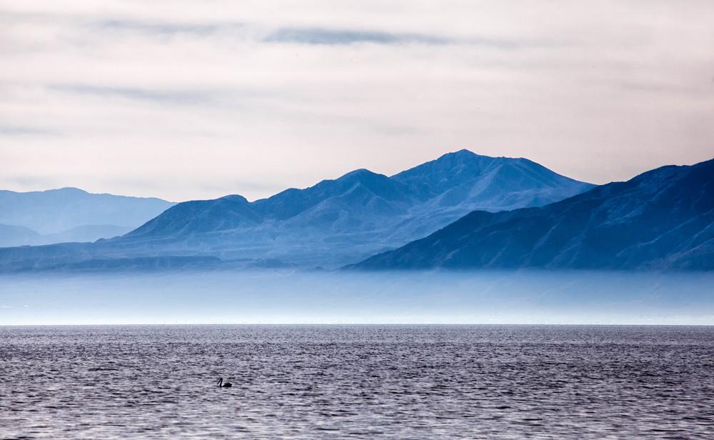 Salton Blue.jpg