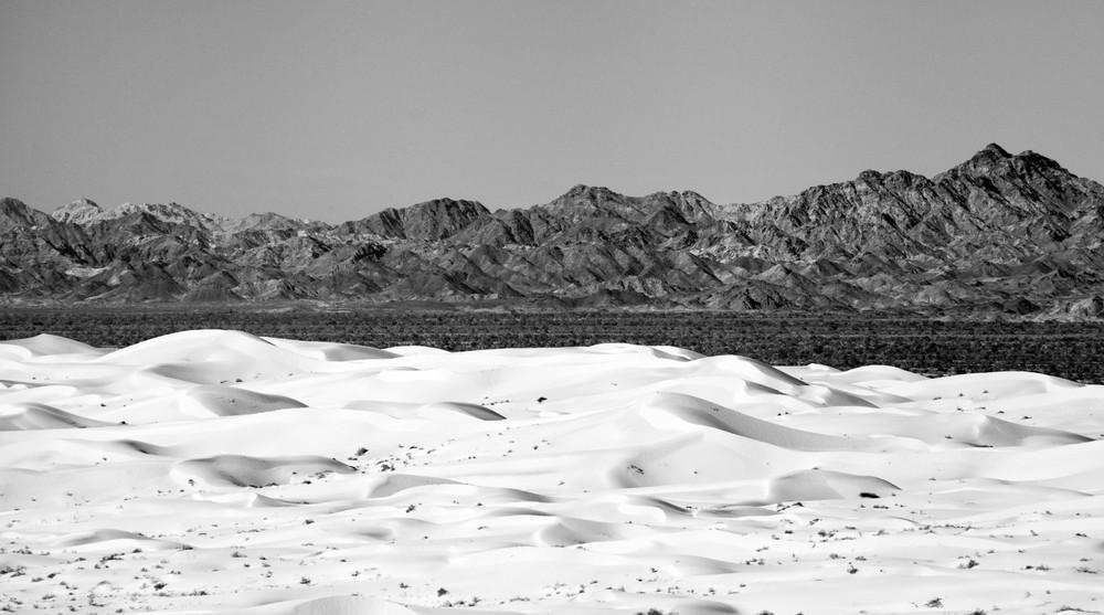 Dune Starters.jpg