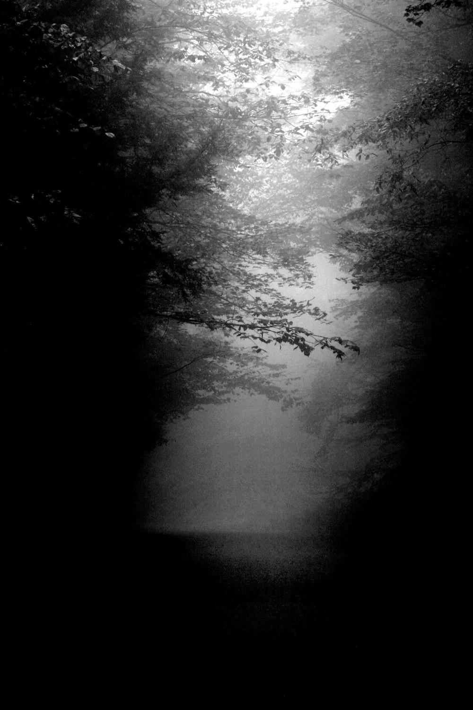 foggyroad_bw.jpg