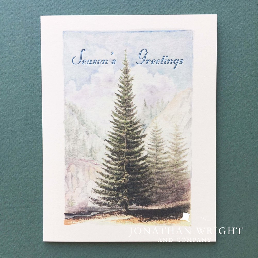 MAJESTIC PINE - SEASONS GREETINGS.jpg