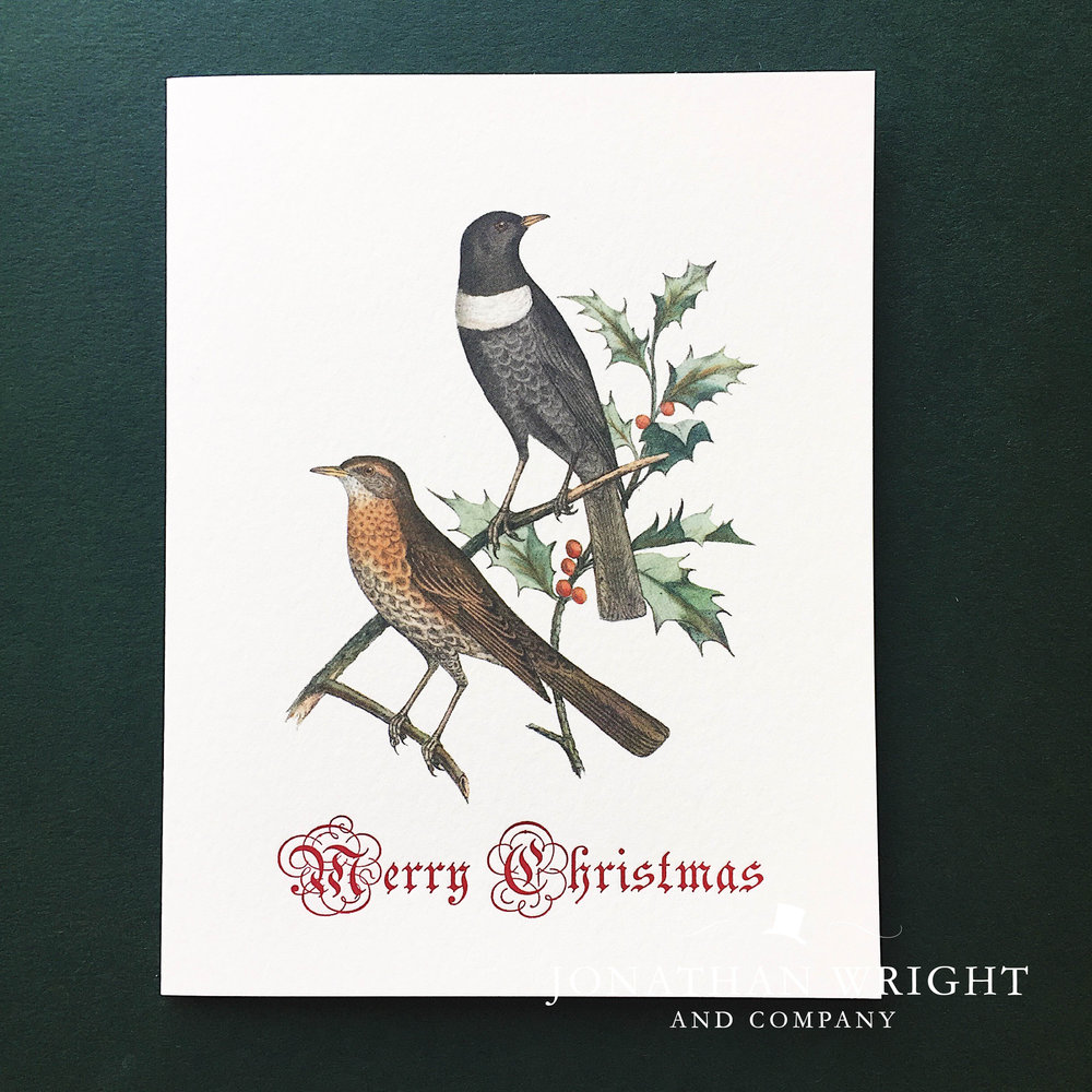 BIRDS O' HOLLY - MERRY CHRISTMAS.jpg