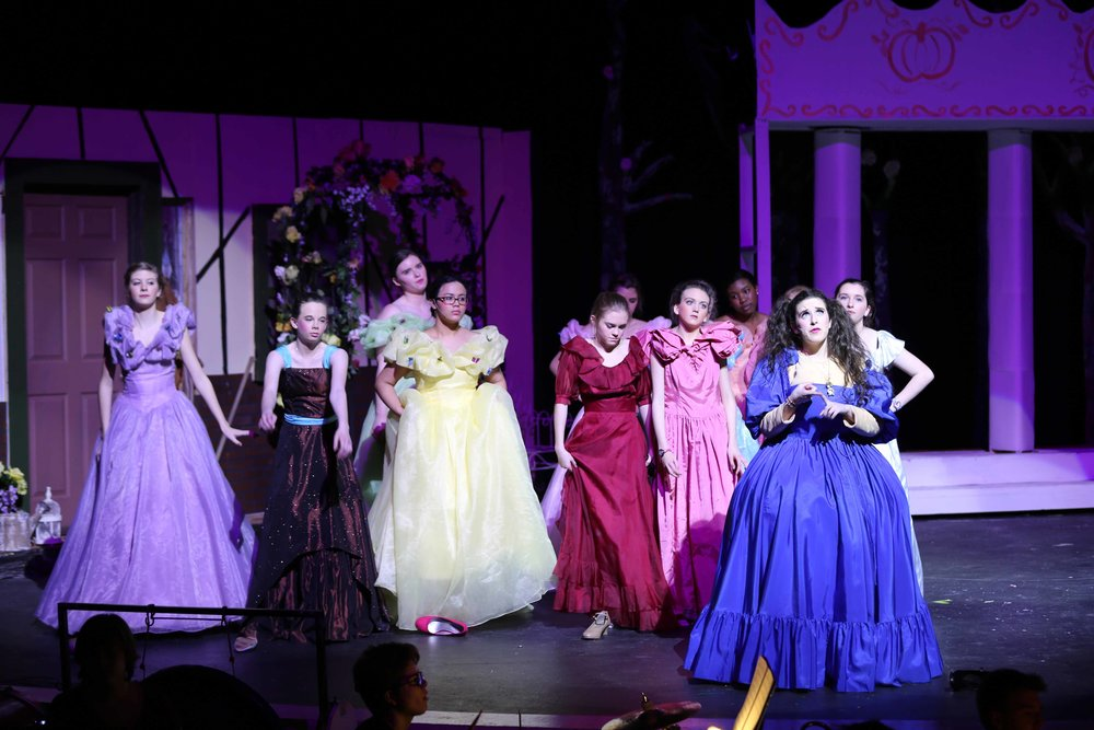 Feb3 Cinderella52.jpg