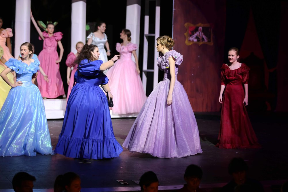 Feb3 Cinderella56.jpg